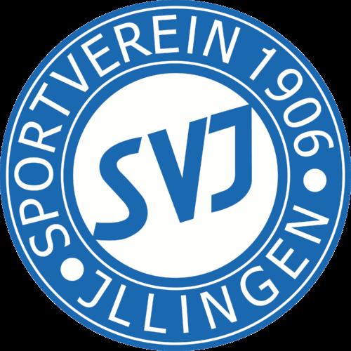 SVI TT - Logo